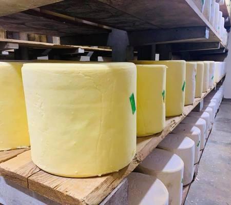 Coopérative laitière agricole de Saint-Bonnet-de-Salers - Saint-Bonnet-de-Salers - La fabrication du fromage