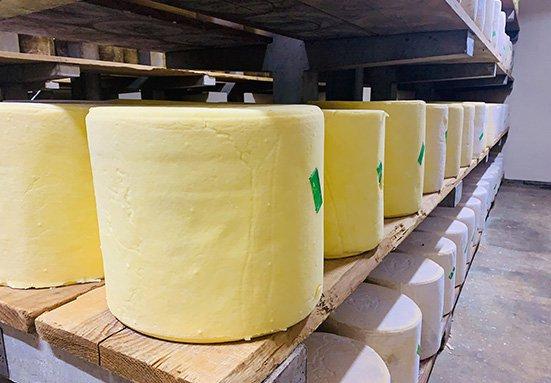 Suivez les actualités de la Coopérative laitière agricole de Saint-Bonnet-de-Salers